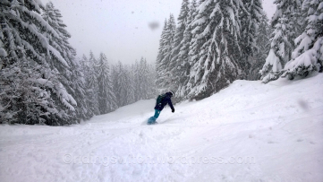 Megève tree runs
